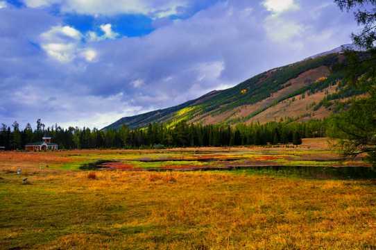 新疆喀纳斯景区景致图片
