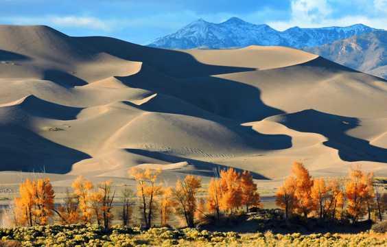 秋日沙丘景观
