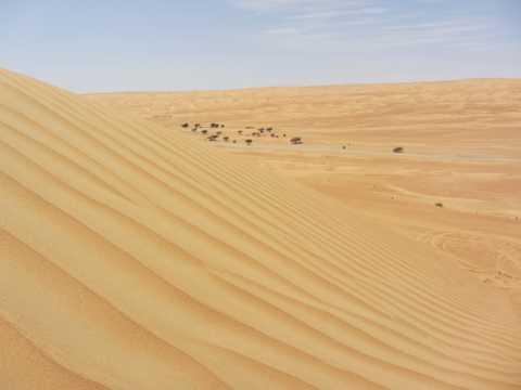 荒凉大漠图片