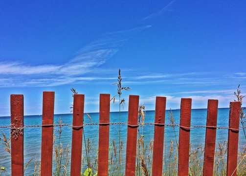 海岸上的木栅栏