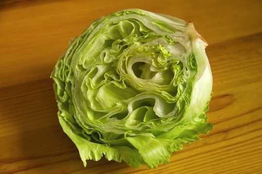脆嫩爽口的生菜图片
