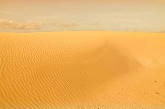 金色的沙漠