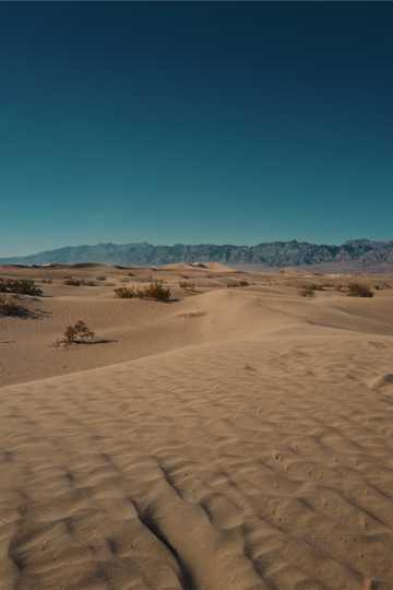 荒无人烟的沙漠
