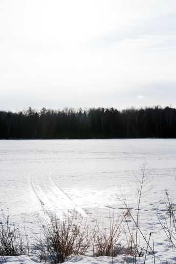 寒冬雪地图片