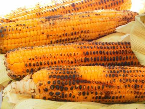 美味的烤玉米棒