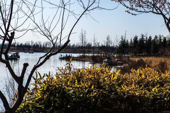 北京南海子公园风景