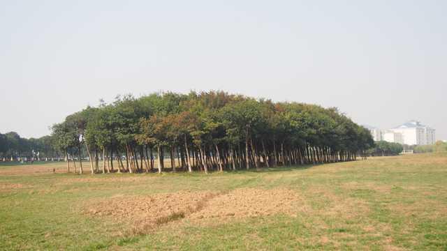 江苏苏州独墅湖湖岸风景