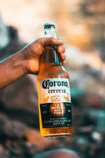 科罗娜啤酒图片
