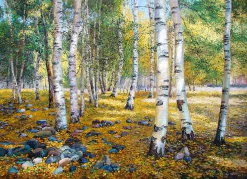 秋季的白桦林图片