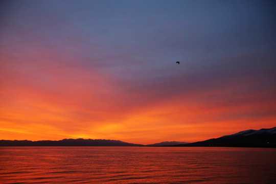 青海湖朝阳风光
